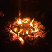 campfire-marshmallows
