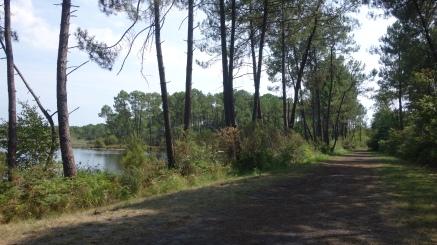 gravel bike lake tour bordeaux